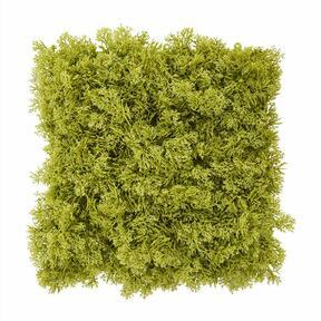Kunst paneel groen mos - 25x25 cm