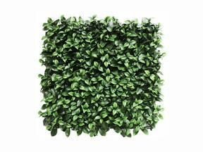 Kunstblad paneel Gardenia - 50x50 cm