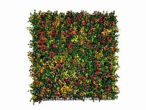Kunstbloemenpaneel Leucadendron - 50x50 cm