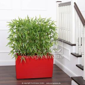Kunsthek Bamboe 120 cm