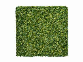 Kunstloofpaneel Buxus - 50x50 cm
