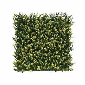 Kunstpaneel Buxus - 50x50 cm