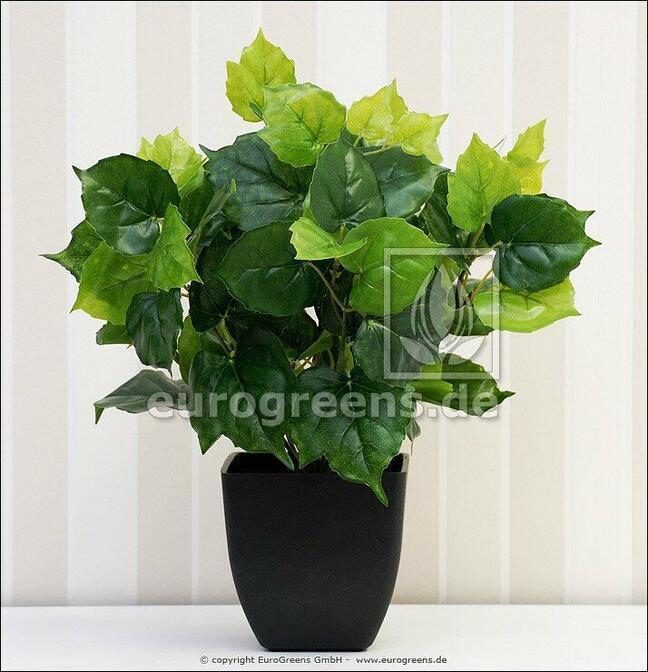Kunstplant Cisus 40 cm