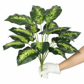 Kunstplant Dífenbachia 50 cm