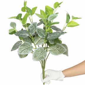 Kunstplant Fitónia wit 45 cm