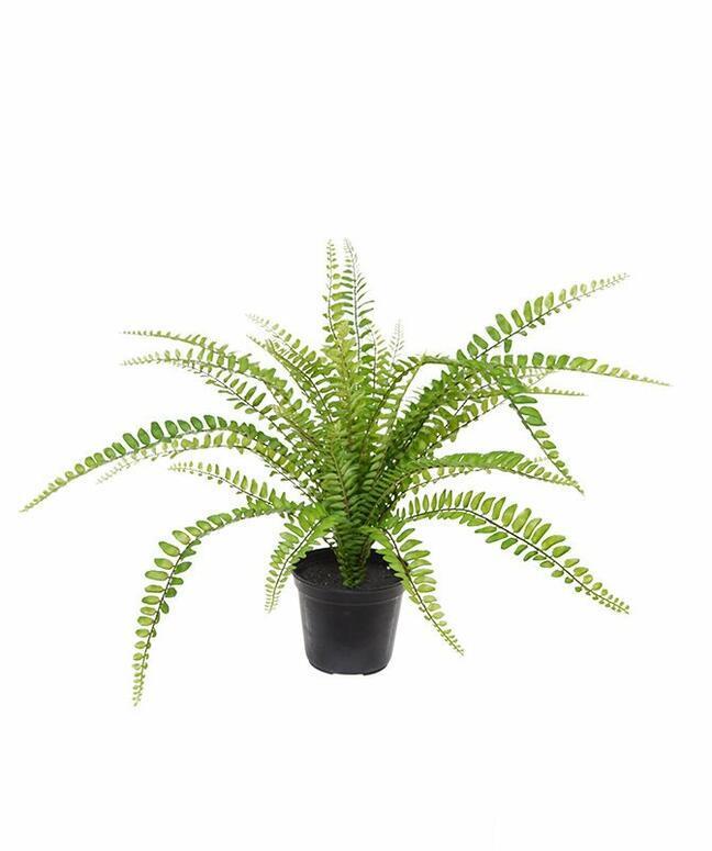 Kunstplant Spleenwort 45 cm